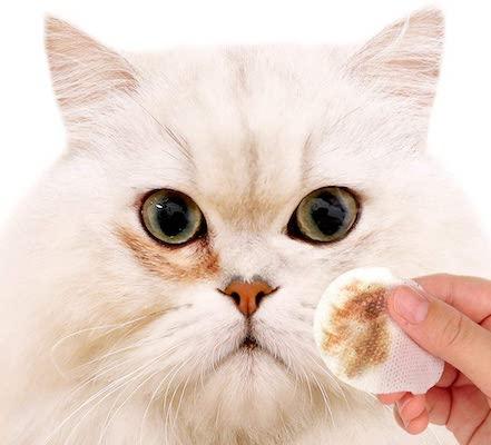 Cat wipes